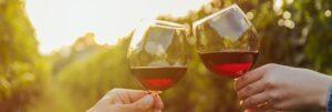 Beberapa Daftar Wine Termahal Dan Terbaik Di Dunia